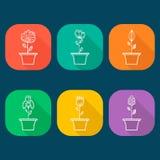 Ícone das flores ajustado no estilo liso na moda Foto de Stock