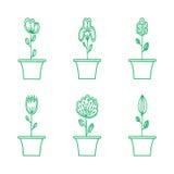 Ícone das flores ajustado no estilo liso na moda Imagem de Stock