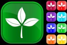 Ícone das folhas Fotografia de Stock