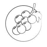 Ícone das uvas fotografia de stock