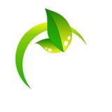 Ícone de Eco Imagem de Stock