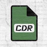 Ícone do arquivo dos cdr do computador Imagens de Stock