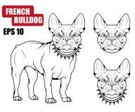 Ícone do buldogue francês ilustração do vetor