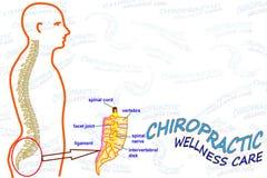 Ícone do cartão de cuidado do bem-estar da quiroterapia Imagem de Stock Royalty Free