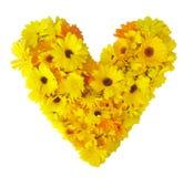 Ícone do coração feito das flores brilhantes coloridas isoladas no branco Fotos de Stock