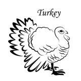 Ícone do esboço de Turquia para a Web, o móbil e o infographics Ícone tirado mão do peru Ícone do vetor de Turquia T ilustração stock