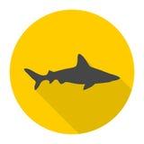 Ícone do tubarão com sombra longa Imagem de Stock