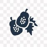 Ícone do vetor da papaia isolado no fundo transparente, papaia t ilustração royalty free