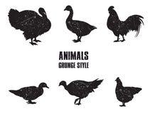 Ícone dos animais de exploração agrícola Imagens de Stock