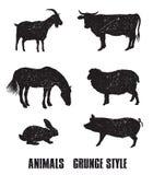 Ícone dos animais de exploração agrícola Fotografia de Stock Royalty Free