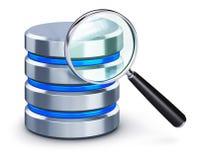 Ícone e lupa do disco rígido Imagem de Stock