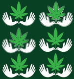 Ícone médico da folha da marijuana do cannabis com símbolo calmo da pomba Foto de Stock
