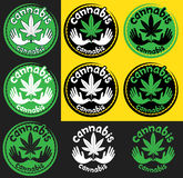 Ícone médico do cannabis com símbolo calmo da pomba Fotografia de Stock