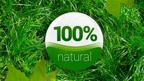 ícone natural de 100% Imagem de Stock Royalty Free