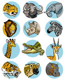 Ícones ajustados com animais africanos ilustração royalty free