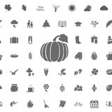 Ícones ajustados, estilo simples da celebração do outono Fotos de Stock