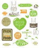 Ícones ambientais, etiquetas, crachás ilustração do vetor