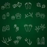 Ícones animais básicos do esboço das pegadas ajustados Foto de Stock