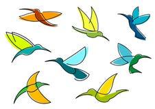 Ícones azuis, alaranjados e verdes dos colibris Fotografia de Stock