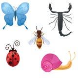 Ícones bonitos do inseto Fotografia de Stock