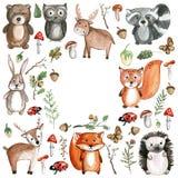 Ícones bonitos do jardim zoológico do jardim de infância das imagens da aquarela dos animais da floresta Fotos de Stock Royalty Free
