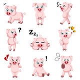 Ícones bonitos dos desenhos animados do porco Foto de Stock Royalty Free