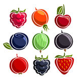 Ícones coloridos ajustados das bagas do vetor ilustração stock