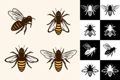 Ícones da abelha do vetor ilustração do vetor