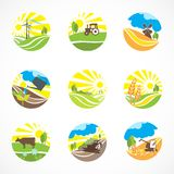 Ícones da agricultura ajustados Fotografia de Stock Royalty Free