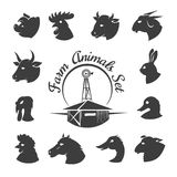 Ícones da carne do animal de exploração agrícola Imagem de Stock