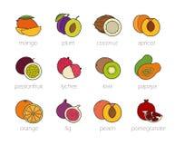 Ícones da cor dos frutos ajustados ilustração royalty free
