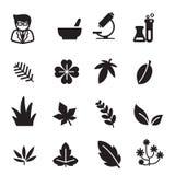 Ícones da erva da silhueta ajustados Imagens de Stock Royalty Free