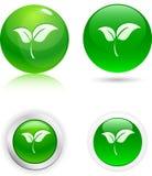 Ícones da folha. Fotos de Stock