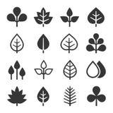 Ícones da folha ajustados no fundo branco Vetor ilustração stock