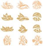 Ícones da fruta Foto de Stock