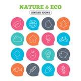 Ícones da natureza e do Eco Árvores, flor cor-de-rosa ilustração royalty free
