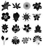 Ícones da silhueta da flor ajustados Foto de Stock