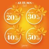 Ícones da venda do outono com folhas da castanha Imagens de Stock