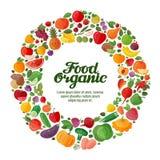 Ícones das frutas e legumes do vetor Alimento biológico ilustração do vetor
