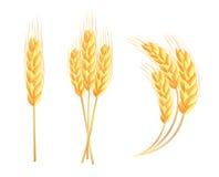 Ícones das orelhas do trigo Imagem de Stock Royalty Free