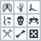 Ícones de esqueleto do vetor ajustados Imagens de Stock Royalty Free