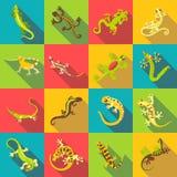 Ícones diferentes ajustados, estilo liso do lagarto Fotografia de Stock Royalty Free