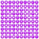 100 ícones do alimento natural ajustados roxos Imagem de Stock
