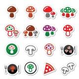 Ícones do cogumelo ajustados Foto de Stock
