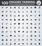 Ícones do cultivo orgânico ajustados Imagens de Stock Royalty Free