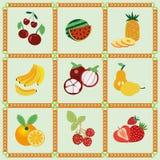 Ícones do fruto - ilustração Fotografia de Stock