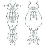 Ícones do inseto, grupo do vetor Estilo triangular abstrato Foto de Stock Royalty Free