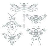 Ícones do inseto, grupo do vetor Estilo triangular abstrato a abelha, tropeça a abelha, libélula, vespa Fotos de Stock Royalty Free