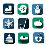 Ícones do inverno Imagem de Stock Royalty Free