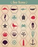 Ícones do mar e grupo de símbolos Animais de mar Elementos náuticos do projeto Vetor Fotografia de Stock